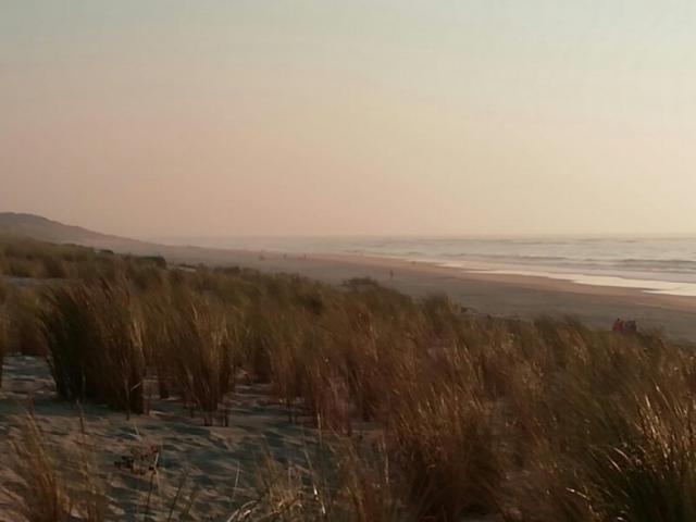 en regardant le vent sur la mer